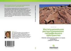 Bookcover of Институциональное реструктурирование   географического пространства