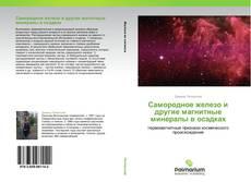 Bookcover of Самородное железо и другие магнитные минералы в осадках
