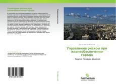 Couverture de Управление риском при жизнеобеспечении города