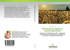 Capa do livro de Почвенные грибы в жизни растений
