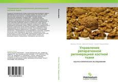 Управление репаративной регенерацией костной ткани的封面