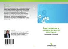 Buchcover von Вынужденные и параметрические колебания