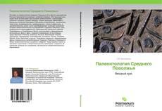 Палеонтология Среднего Поволжья的封面