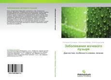 Bookcover of Заболевания мочевого пузыря