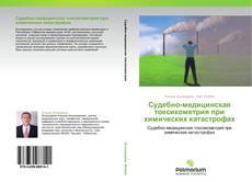 Bookcover of Судебно-медицинская токсикометрия при химических катастрофах