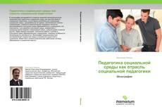 Bookcover of Педагогика социальной среды как отрасль социальной педагогики