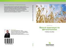Buchcover von Малый практикум по фитопатологии