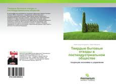 Обложка Твердые бытовые отходы в постиндустриальном обществе