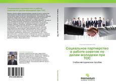 Обложка Социальное партнерство в работе советов по делам молодежи при ТОС