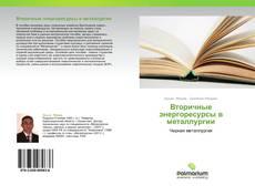 Bookcover of Вторичные энергоресурсы в металлургии