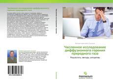 Buchcover von Численное исследование диффузионного горения природного газа