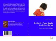 The Family Wage Gap in the United States kitap kapağı