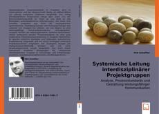 Buchcover von Systemische Leitung interdisziplinärer Projektgruppen