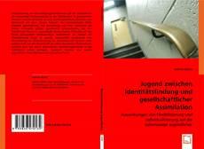 Bookcover of Jugend zwischen Identitätsfindung und gesellschaftlicher Assimilation