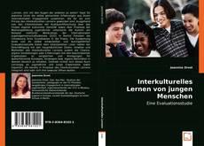 Interkulturelles Lernen von jungen Menschen in Workcamps kitap kapağı