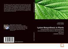 Lysine Biosynthesis in Plants kitap kapağı