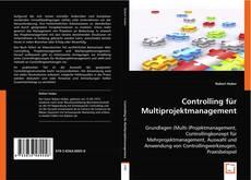 Controlling für Multiprojektmanagement的封面