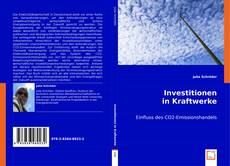 Capa do livro de Investitionen in Kraftwerke