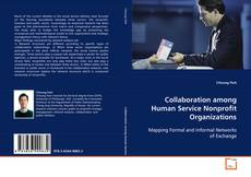 Bookcover of Collaboration among Human Service Nonprofit Organizations