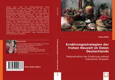 Capa do livro de Ernährungsstrategien  der frühen Neuzeit    im Osten Deutschlands