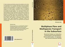 Обложка Multiphase Flow and Multispecies Transport in the Subsurface