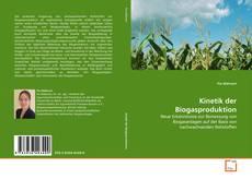 Kinetik der Biogasproduktion kitap kapağı