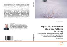 Bookcover of Impact of Terrorism on Migration Patterns in Turkey