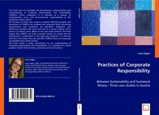 Bookcover of Practices of Corporate Responsibility