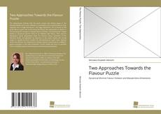 Copertina di Two Approaches Towards the Flavour Puzzle