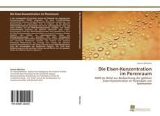 Buchcover von Die Eisen-Konzentration im Porenraum
