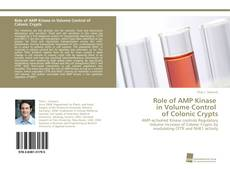 Buchcover von Role of AMP Kinase in Volume Control of Colonic Crypts