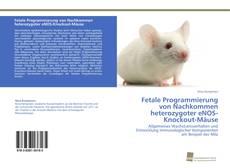 Обложка Fetale Programmierung von Nachkommen heterozygoter eNOS-Knockout-Mäuse