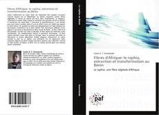 Fibres d'Afrique: le raphia, extraction et transformation au Bénin kitap kapağı