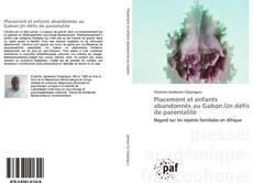 Bookcover of Placement et enfants abandonnés au Gabon.Un défis de parentalité