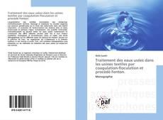 Capa do livro de Traitement des eaux usées dans les usines textiles par coagulation-floculation et procédé Fenton.