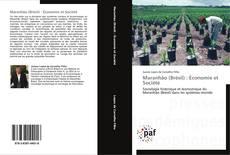 Обложка Maranhão (Brésil) : Économie et Société
