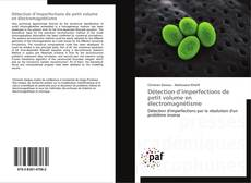 Couverture de Détection d'imperfections de petit volume en électromagnétisme