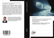 Borítókép a  Modelisation Du Comportement Mécanique D'un Matériau Agregataire - hoz