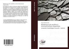 Bookcover of Matériaux de mullite à microstructure organisée