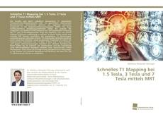 Bookcover of Schnelles T1 Mapping bei 1.5 Tesla, 3 Tesla und 7 Tesla mittels MRT