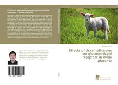 Bookcover of Effects of dexamethasone on glucocorticoid receptors in ovine placenta