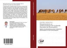 Morphométrie et endocrinologie de la glande thyroïde du dromadaire kitap kapağı