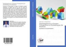 Oxyhalogénures à Clusters Triangulaires et Octaédriques de Niobium kitap kapağı