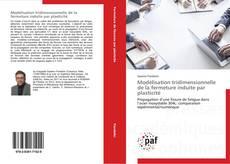 Buchcover von Modélisation tridimensionnelle de la fermeture induite par plasticité