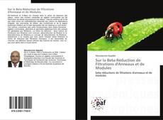 Bookcover of Sur la Beta-Réduction de Filtrations d'Anneaux et de Modules