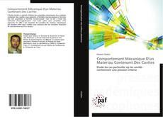 Comportement Mécanique D'un Materiau Contenant Des Cavites kitap kapağı