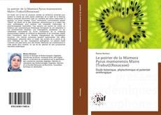 Le poirier de la Mamora  Pyrus mamorensis Maire (Trabut)(Rosaceae)的封面