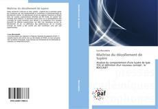 Buchcover von Maîtrise du décollement de tuyère