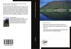 Couverture de Risque naturel et dynamiques des versants en Islande du nord-ouest