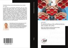 Bookcover of Problématique des phénomènes des ondes de choc